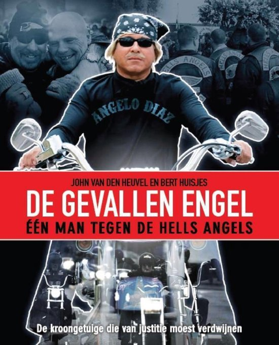 Cover van het boek 'De Gevallen Engel'
