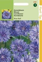 Hortitops Zaden - Centaurea cyanus dubbelbloemig Blue Ball
