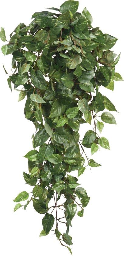 Mica Decorations - Scindapsus Hangend L80B30H15 Groen