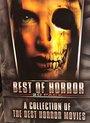 Best of Horror Box (20 DVD)