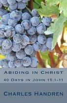 Boek cover Abiding in Christ van Charles Handren (Paperback)