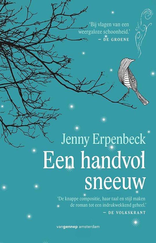 Een handvol sneeuw - Jenny Erpenbeck |