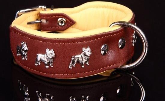 Dog's Companion Leren Halsband - Franse Bulldog - 51-60 cm x 50 mm - Bruin/Naturel