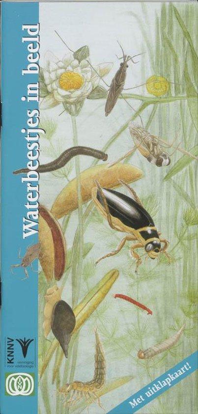 In Beeld 14 - Waterbeestjes in beeld - B. Higler  