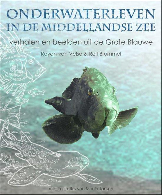 Onderwaterleven in de Middellandse zee - Royan van Velse   Fthsonline.com