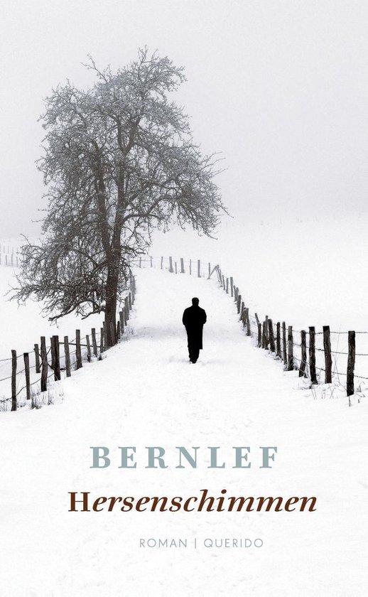 Boek cover Hersenschimmen van J. Bernlef