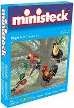 Ministeck: Vogels