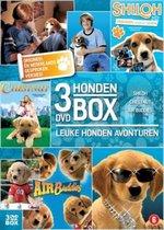 Hondenbox - Shiloh, Chestnut, Air Buddies