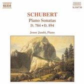 Schubert: Piano Son. D784&D894