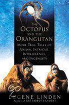 The Octopus & The Orangutan