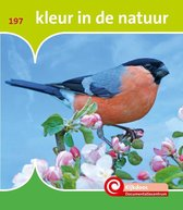 De Kijkdoos - Kleur in de natuur