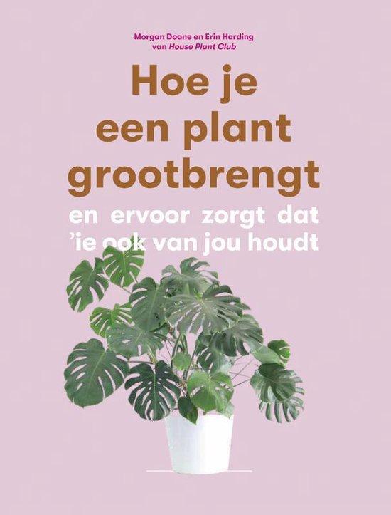 Hoe je een plant grootbrengt - Morgan Doane |