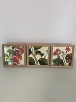 Fotolijsten met diverse decoratieve prints (bloemen) - set van 3 stuks (houten frame)