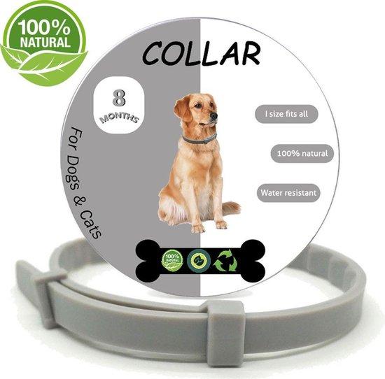 Vlooienband - Alle Honden & Katten