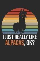 I Just Really Like Alpacas, OK?