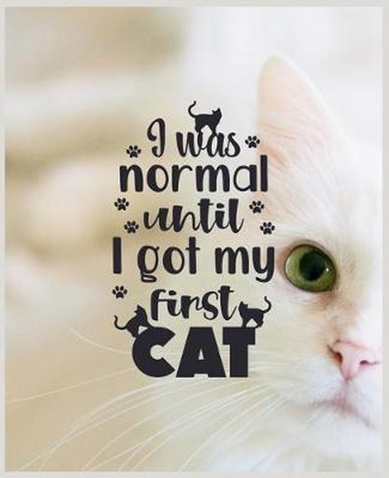 I Was Normal Until I Got My First Cat