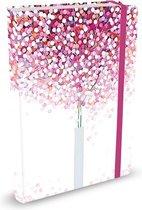 Peter Pauper Notitieboek - Lollipop (mid-size)