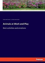 Animals at Work and Play