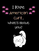 I love American curl, What's about you?: Cut Cat Handwriting Workbook For Kids, practicing Letters, Words, Sentences.