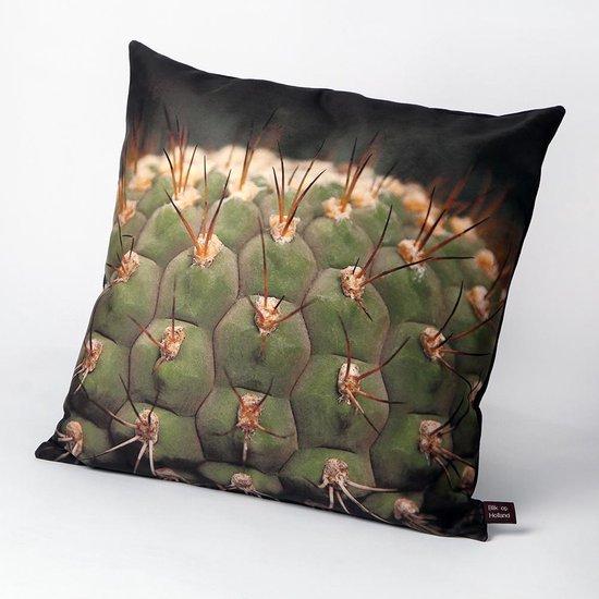 HUGS Indoor 50x50 cactus