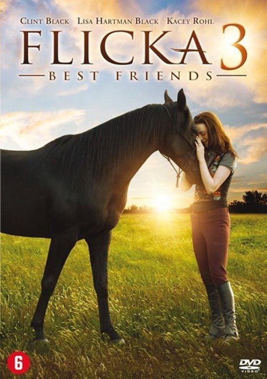 Cover van de film 'Flicka 3'