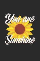 You are sunshine: 6x9 Spring - grid - squared paper - notebook - notes