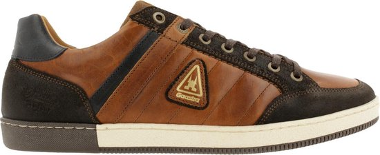 Gaastra Willis Trm Sneaker Men Cognac-Brown 43