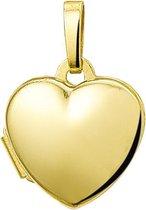 Sparkle14 Medaillon Hart - Goud