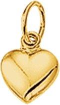 Sparkle14 Hanger Hart - Goud