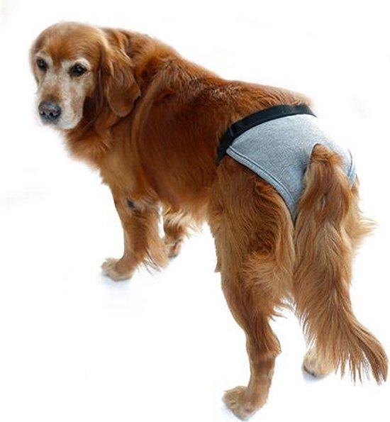 Hondenbroekje - luier voor teef - loopsheid - ongesteldheid - wasbaar - GRIJS - EXTRA LARGE