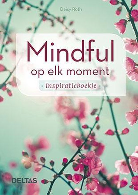 Mindful op elk moment - DAISY ROTH  