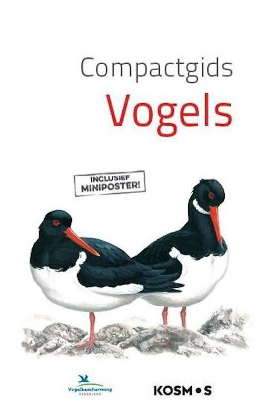 Boek cover Compactgids - Vogels van Bloomsbury (Onbekend)