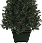 Vierkante kerstboomvoet groen voor een echte kerstboom - Kerstboomstandaards