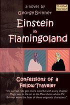 Einstein in Flamingoland