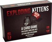Exploding Kittens NSFW Edition - Engelstalig Kaartspel