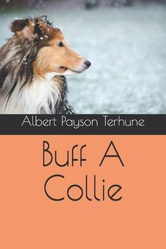 Buff A Collie