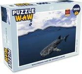 Puzzel 1000 stukjes volwassenen Haaien 1000 stukjes - Walvishaai aan de oppervlakte  - PuzzleWow heeft +100000 puzzels