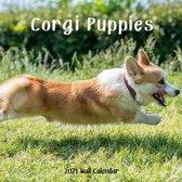 Corgi Puppy 2021 Wall Calendar