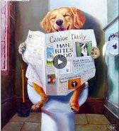 Diamond Painting – Hond op Toilet leest de Krant - 40x60 cm – Volledige bedekking - Vierkante steentjes + GRATIS 28-Vak SORTEERDOOS - Veelkleurig