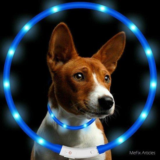 Led Halsband Hond Usb Oplaadbaar 20-70 CM - Led Honden Halsband - Blauw - Extra Small tm Extra Large - Universeel - Honden lampje - Honden Licht - Honden Veiligheid - Lichtgevende Halsband Hond