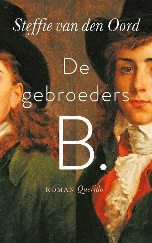 Boek cover De gebroeders B. van Steffie van den Oord (Onbekend)