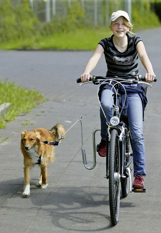 Flamingo fietsbeugel Doggy Sprinter - 30 x 30 cm