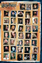 GBeye Harry Potter 7 Characters Poster 61x91,5cm