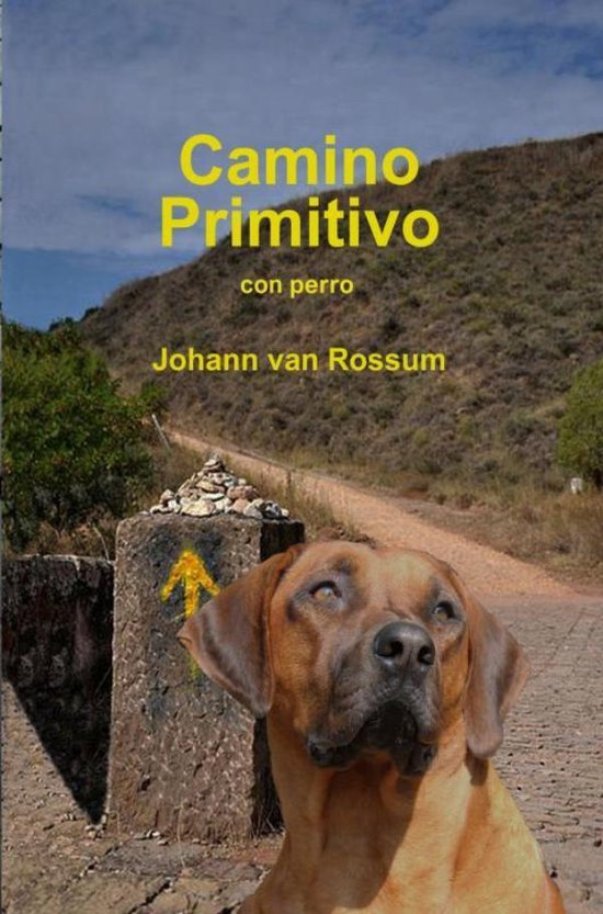 Camino Primitivo - Johann van Rossum  