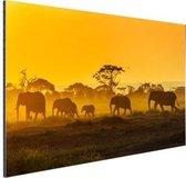 Kudde olifanten bij zonsopkomst Aluminium 30x20 cm - klein - Foto print op Aluminium (metaal wanddecoratie)
