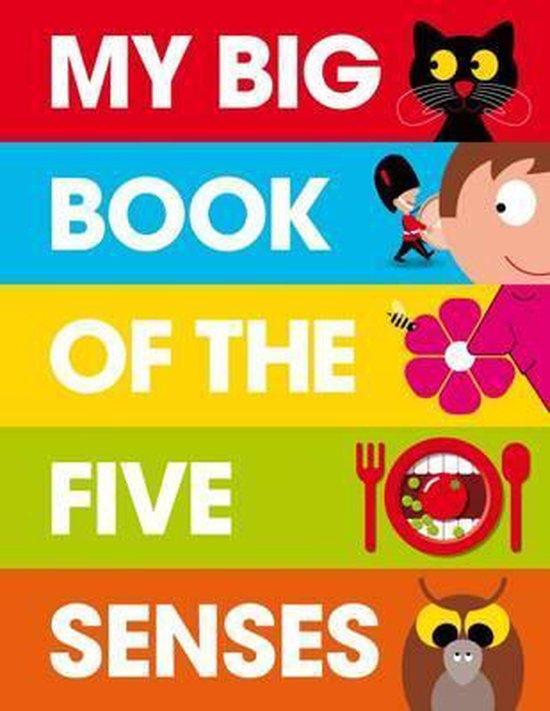 My Big Book of the Five Senses