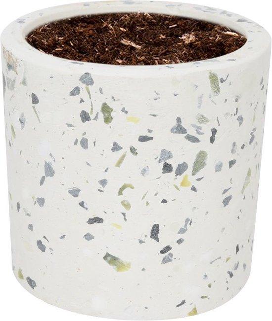 WLPlants Luxe Bloempot Terrazzo Ø7 - Cilinder - Wit - Hoogte 7 cm - Keramische sierpot met hoogwaardige afwerking - Geschikt als plantenpot - Binnen en buiten te gebruiken