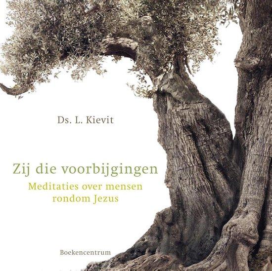 Zij die voorbijgingen - L. Kievit pdf epub