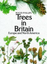 Trees in Britain, Europe and North America