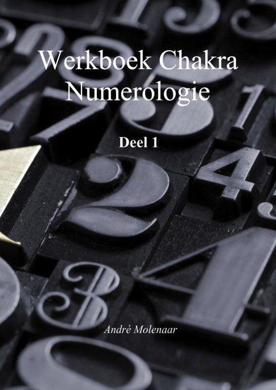 Chakra numerologie 1 Werkboek
